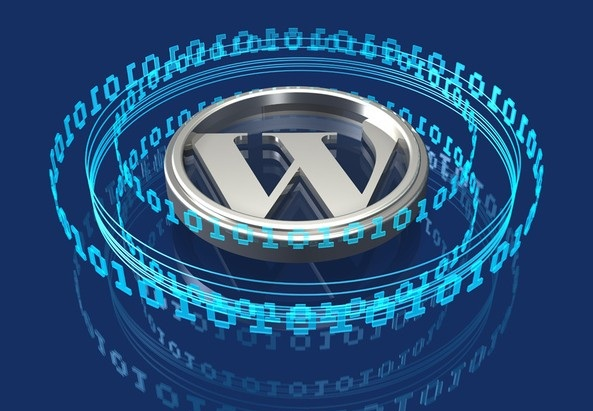 Wordpress articolo post