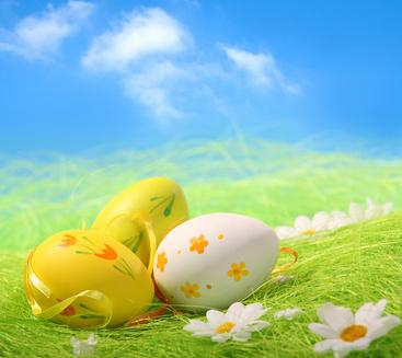Buona Pasqua - Fabiocammisa.altervista.org