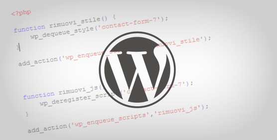come-disabilitare-css-e-javascript-di-default-dei-plugin-wordpress (fabiocammisa.altervista.org)
