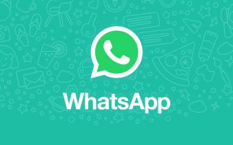 Whatsapp spia utenti